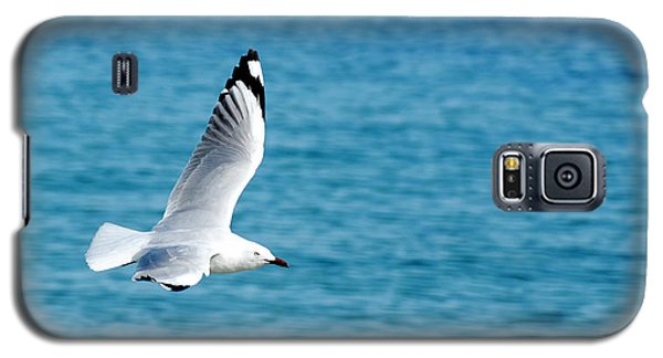 Galaxy S5 Case featuring the photograph Seagull by Yew Kwang