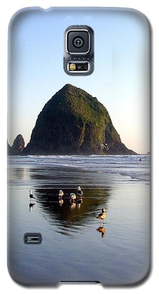 Seagulls And A Surfer Galaxy S5 Case