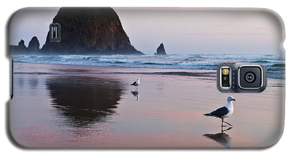 Seagulls And Haystack Rock Galaxy S5 Case