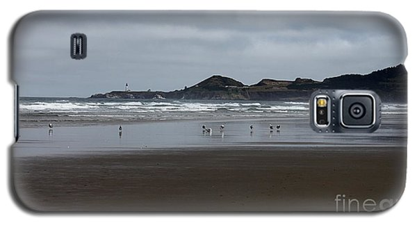 Seagulls And Lighthouse Galaxy S5 Case