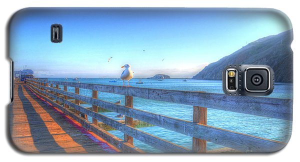 Seagulls And Ocean Galaxy S5 Case