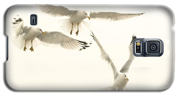 Galaxy S5 Case featuring the photograph Seagulls Flight by Raymond Earley