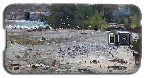 Seagull Galaxy S5 Case - Seagulls On Niagara River by Ylli Haruni