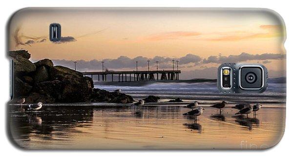 Seagulls On The Coast Galaxy S5 Case