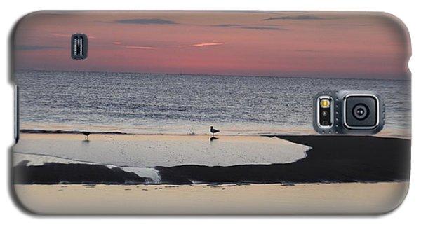 Seagulls On The Seashore Galaxy S5 Case by Robert Banach