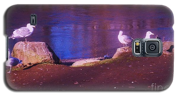 Galaxy S5 Case featuring the photograph Seagulls On The Willamette River by Suzanne McKay