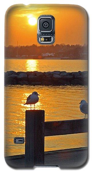 Seaguls At Sunset Galaxy S5 Case