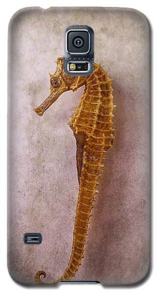 Seahorse Still Life Galaxy S5 Case