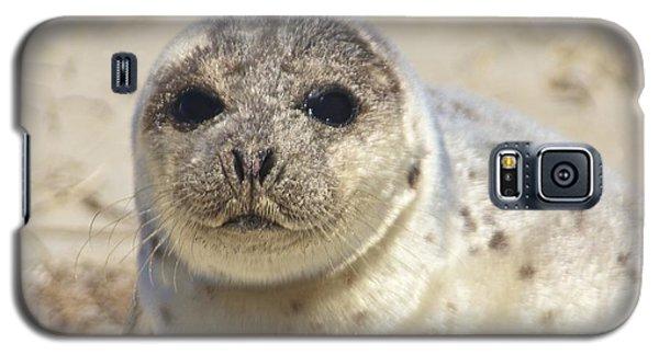 Seal  Galaxy S5 Case