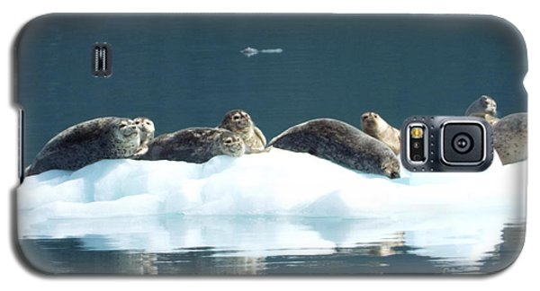 Seal Reflections Galaxy S5 Case