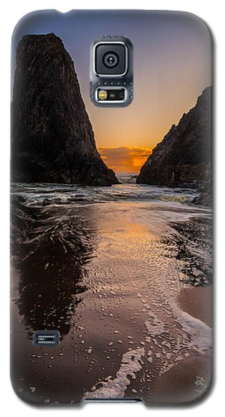 Seal Rock 1 Galaxy S5 Case
