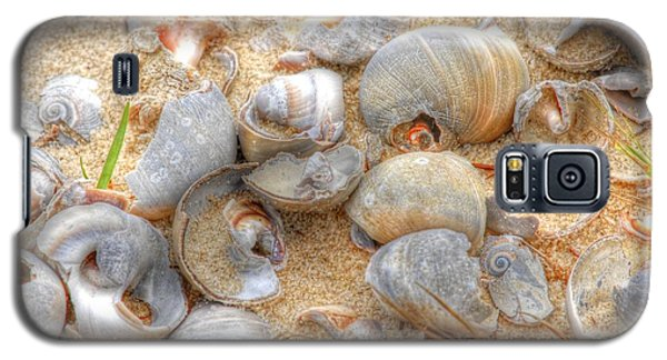 Galaxy S5 Case featuring the photograph Seashell 01 by Donald Williams