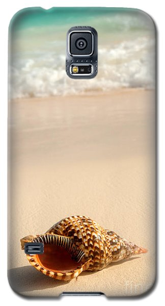 Seashell And Ocean Wave Galaxy S5 Case