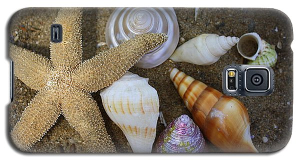 Seashells And Star Fish Galaxy S5 Case