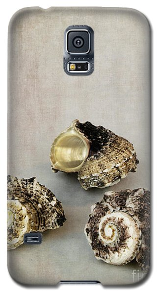 Seashells Galaxy S5 Case