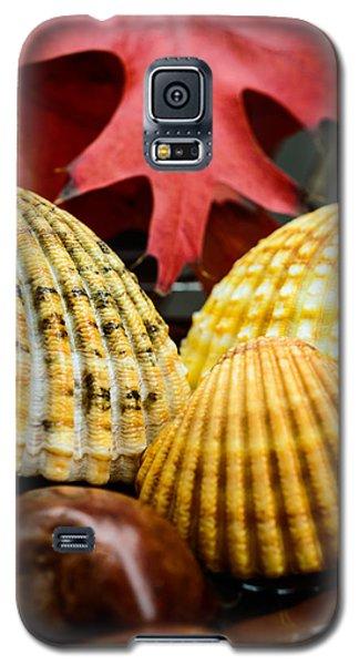 Seashells II Galaxy S5 Case