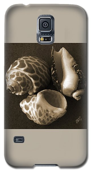 Seashells Spectacular No 1 Galaxy S5 Case