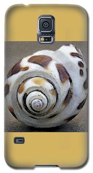 Seashells Spectacular No 2 Galaxy S5 Case