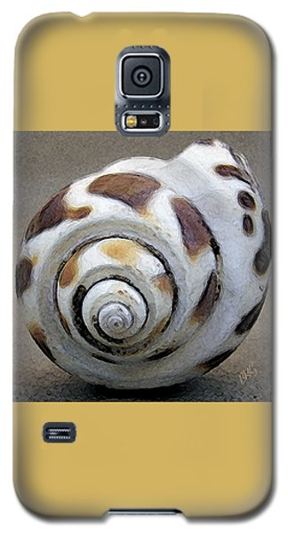 Seashells Spectacular No 2 Galaxy S5 Case by Ben and Raisa Gertsberg
