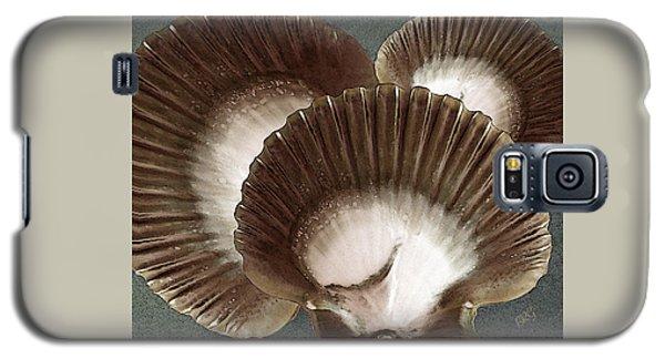 Seashells Spectacular No 22 Galaxy S5 Case