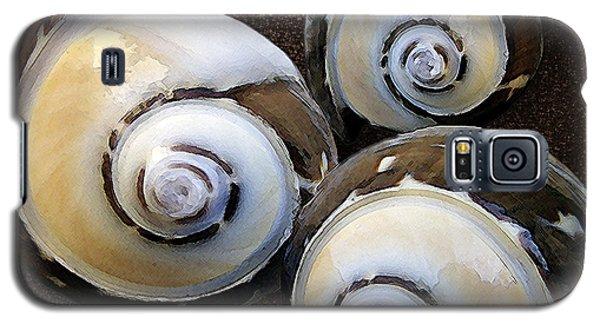 Seashells Spectacular No 23 Galaxy S5 Case