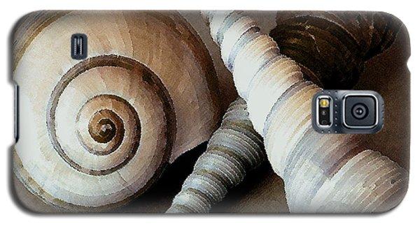 Seashells Spectacular No 24 Galaxy S5 Case