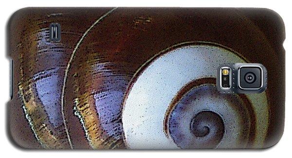 Seashells Spectacular No 26 Galaxy S5 Case