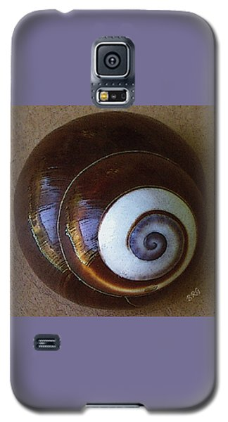 Seashells Spectacular No 26 Galaxy S5 Case