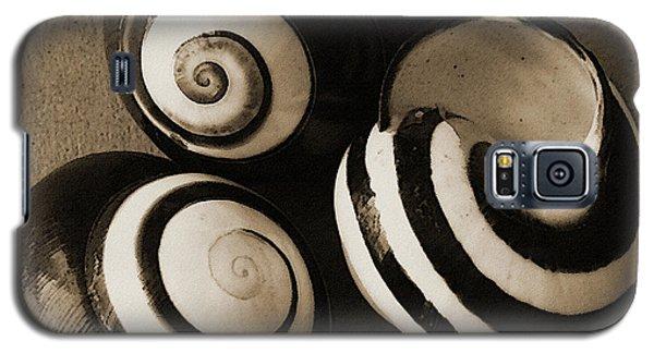 Seashells Spectacular No 27 Galaxy S5 Case