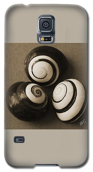 Seashells Spectacular No 28 Galaxy S5 Case by Ben and Raisa Gertsberg