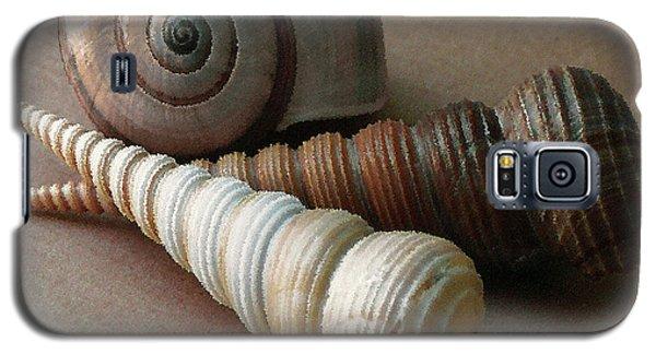 Seashells Spectacular No 29  Galaxy S5 Case