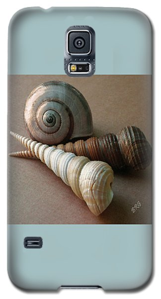 Seashells Spectacular No 29  Galaxy S5 Case by Ben and Raisa Gertsberg