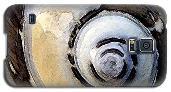 Seashells Spectacular No 3 Galaxy S5 Case