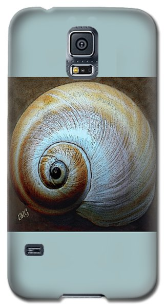 Seashells Spectacular No 36 Galaxy S5 Case