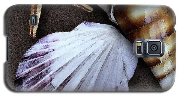 Seashells Spectacular No 37 Galaxy S5 Case