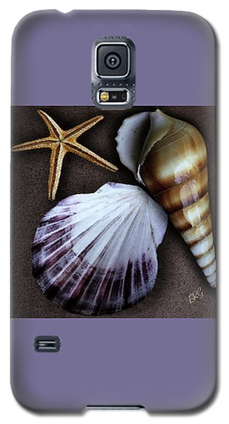 Seashells Spectacular No 37 Galaxy S5 Case