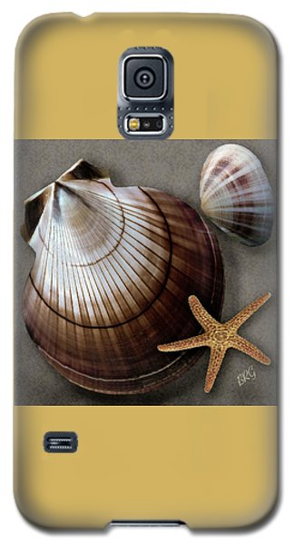 Seashells Spectacular No 38 Galaxy S5 Case by Ben and Raisa Gertsberg