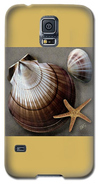 Seashells Spectacular No 38 Galaxy S5 Case