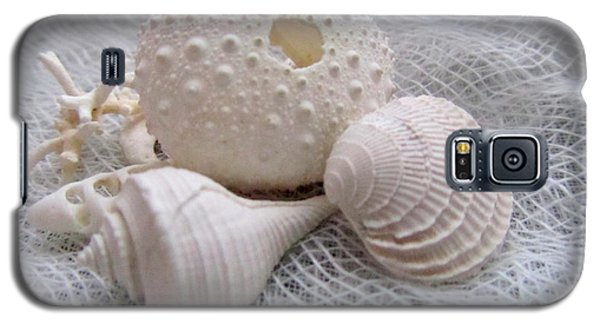 Seashells Study 1 Galaxy S5 Case