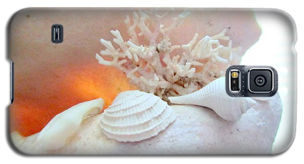 Seashells Study 3 Galaxy S5 Case