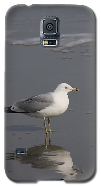 Seaside Sentinel Galaxy S5 Case