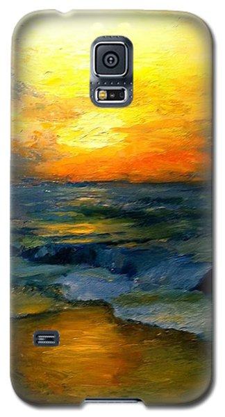 Seaside Sunset Galaxy S5 Case by Gail Kirtz
