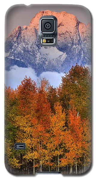 Seasons Change Galaxy S5 Case by Aaron Whittemore