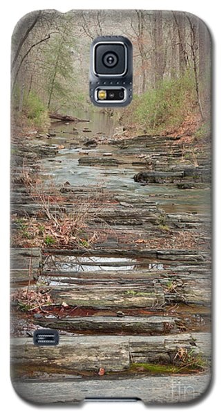 Secret Creek Galaxy S5 Case by Iris Greenwell