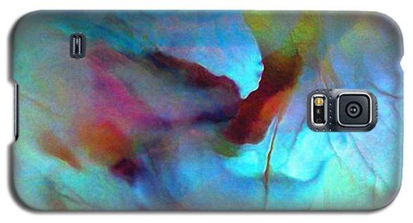 Secret Garden - Abstract Art Galaxy S5 Case