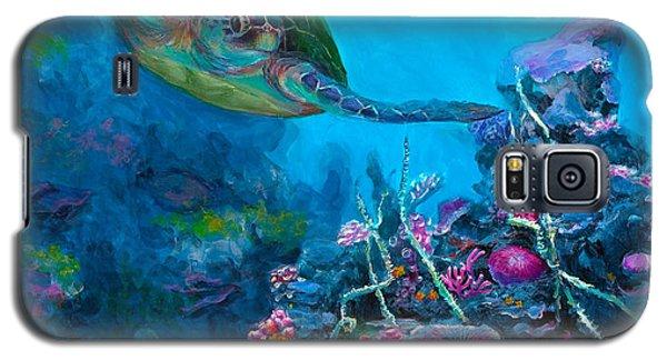 Secret Sanctuary - Hawaiian Green Sea Turtle And Reef Galaxy S5 Case by Karen Whitworth