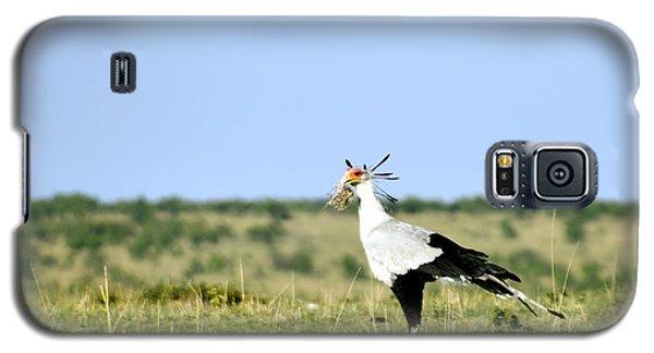 Secretary Bird Gathering  Galaxy S5 Case