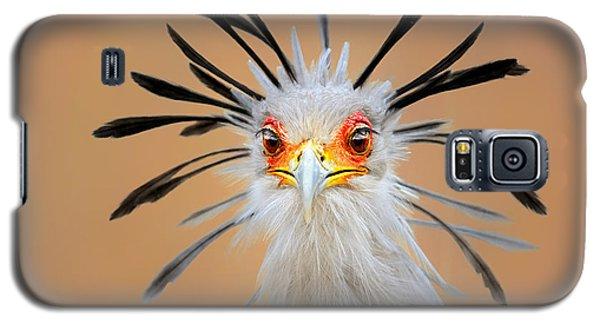 Secretary Bird Portrait Close-up Head Shot Galaxy S5 Case