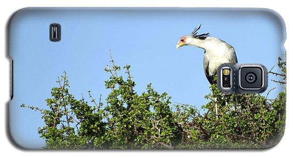 Secretary Bird Stretch Galaxy S5 Case