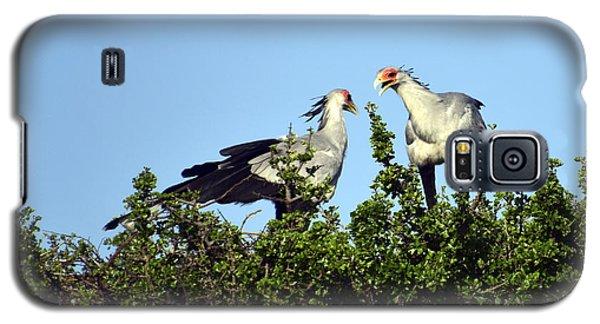Secretary Birds Discuss Their Nest Building Galaxy S5 Case